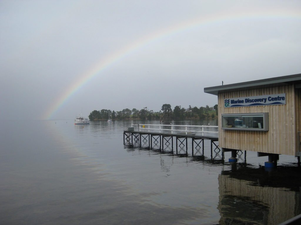 marine discovery center outside with rainbow