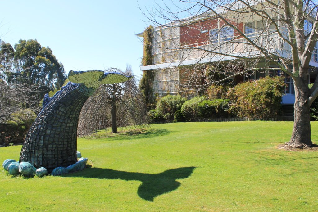 rock sculpture of whale tail with tree and school building